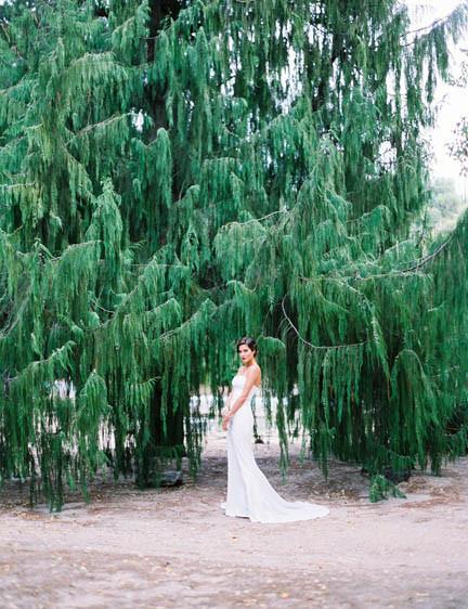 Editorial Santos Costura novia