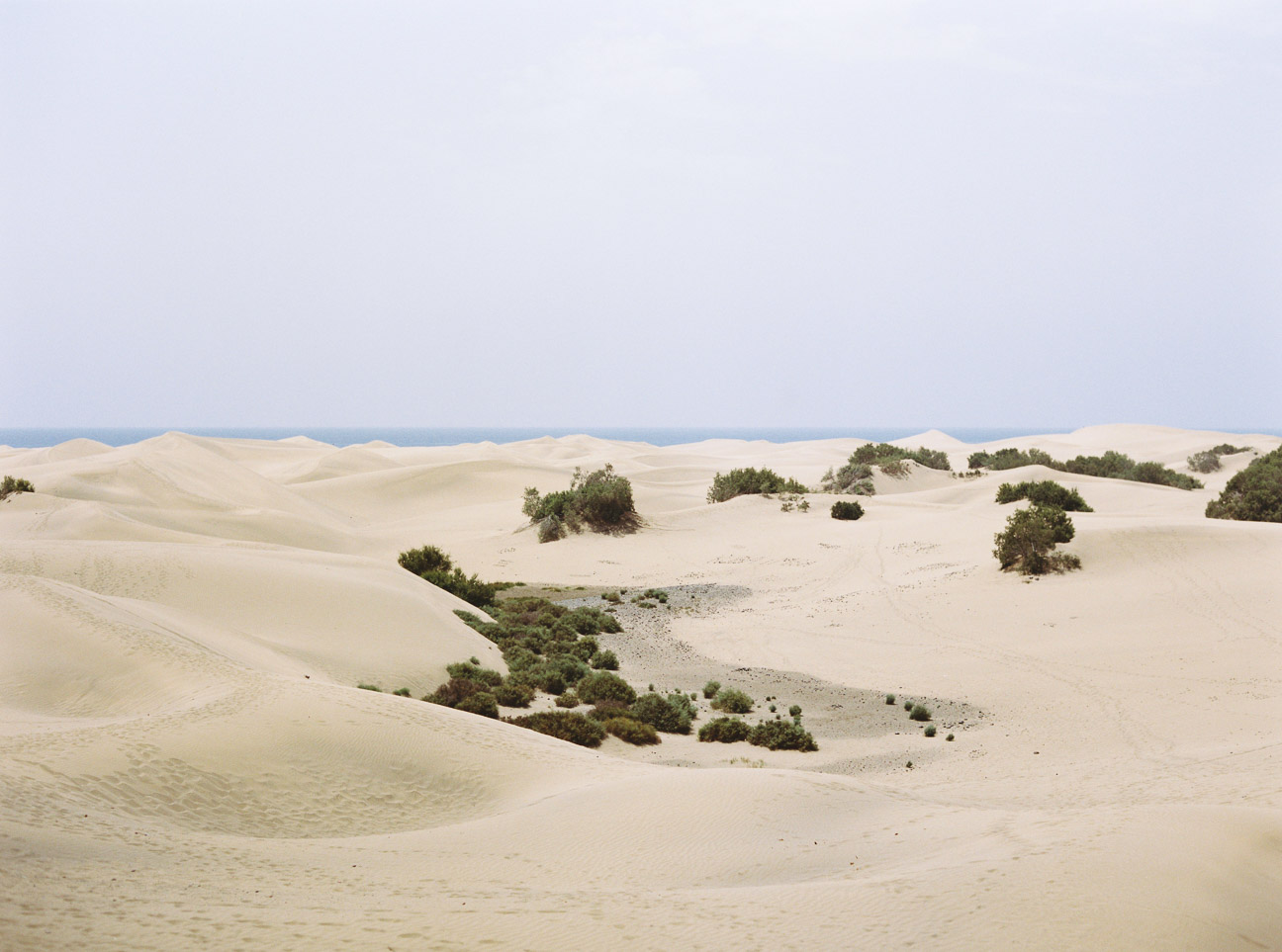 fotografia canarias (4)